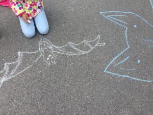 Veranstaltungen rund um den Fledermausschutz sind ein wichtiger Teil unserer Arbeit.